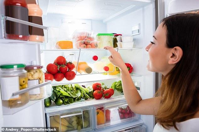 Guía de compra de frigoríficos: cómo elegir el frigorífico adecuado para su hogar